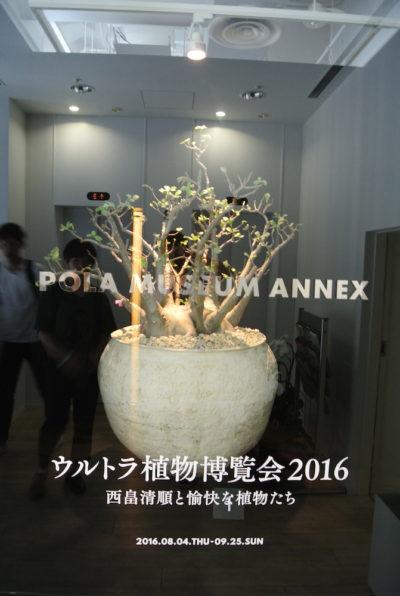 ウルトラ植物博覧会2016